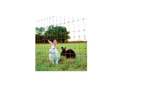 Filet de & Wild Filet de protection, lapin Petit Animal 65 cm x 50 m