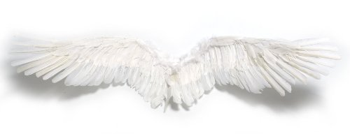 CosStyle tool wing feather angel costume cosplay goddess -