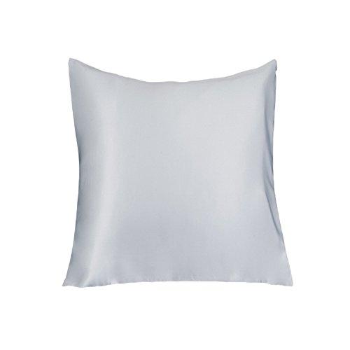 LULUSILK Taie d'oreiller en 100% soie naturelle au 16 Mommes prend soin de votre peau et Antichute de cheveux avec la fermeture éclair invisible, 65 x 65 cm, Grise argentée