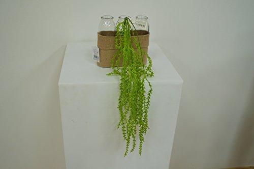 Erba Rampicante artificiale 55 cm (Verde)