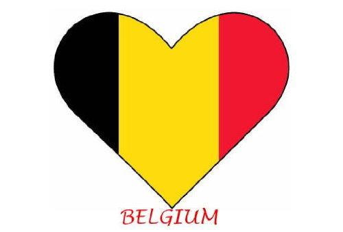 Bandiera Belgio-a forma di cuore-Confezione da 6termoadesivo trasferimenti per bianco/chiaro (Belgio Flag Patch)