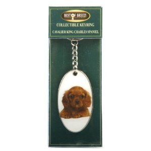 the-olivia-collection-best-of-breed-king-charles-spaniel-keyring-boxed