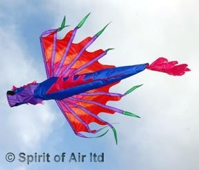tradicional-dragon-chino-cometa-o-manga-de-viento