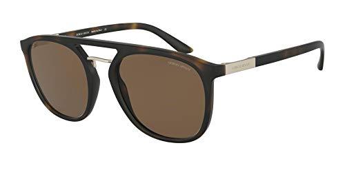 Ray-Ban Herren 0AR8118 Sonnenbrille, Schwarz (Matte Havana), 53.0