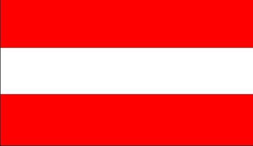 EM 2016 - alle 24 Nationen und mehr !!! Länder Flaggen 90 x 150 cm Bester Preis (Österreich)