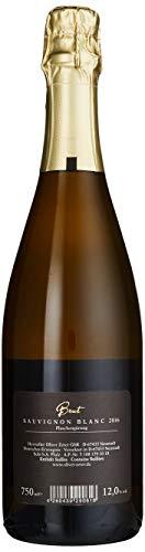 Oliver-Zeter-Sauvignon-Blanc-Brut-Sekt-3-x-075-l