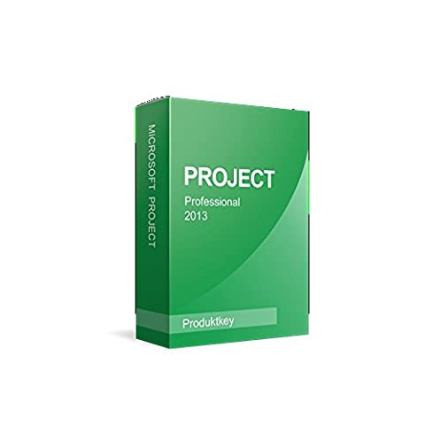 Microsoft Project 2013 Professional (Project Microsoft Office)