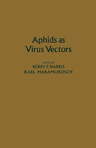 aphids-as-virus-vectors