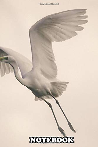 Notebook: Great Egret Albus Or Ardea In Fligh , Journal for Writing, College Ruled Size 6