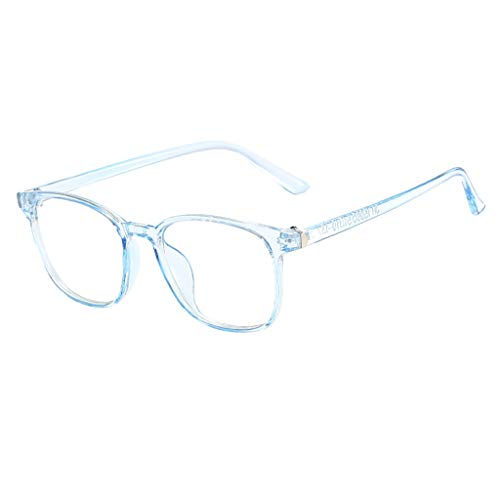 Für Hunde Taucher Kostüm - REALIKE Unisex Damen und Herren Brille Klassische Flacher Spiegel Runder Rahmen Brillengestell Elegant Brillengestell Aus,Anti-Blaulichtbrille, (Farbe : Schwarz, Rosa, Grau, Blau)