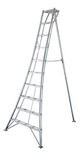Niwaki 10' Tripod Ladder