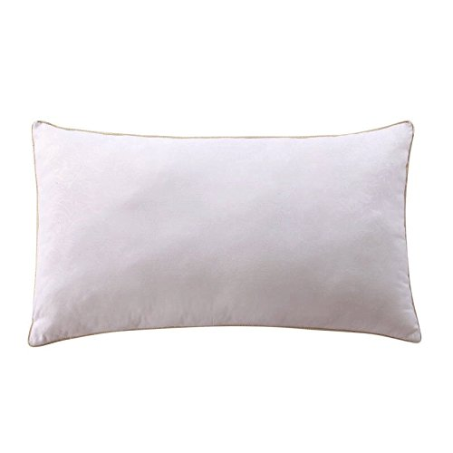 super-spring-bounce-back-pillows-with-free-quilted-poly-cotton-pillow-white-4874cm18892913inches