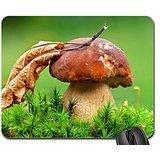 Mushroom under autumn leaf Mouse Pad, Mousepad