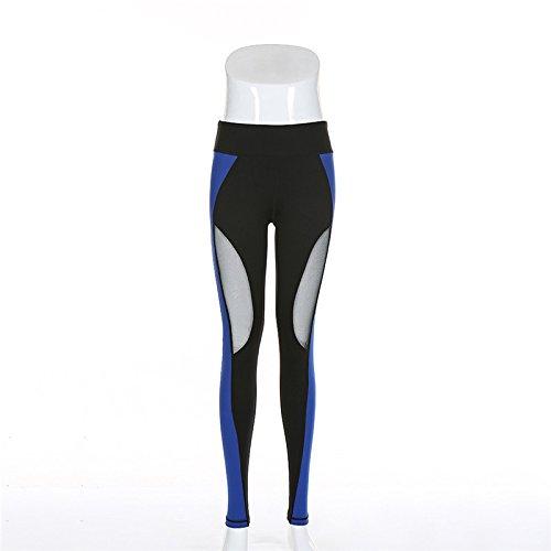 Xuanytp Pantalones de Yoga Pantalones Malla para Mujer Negro Azul Costura Pantalones Transparentes Pantalones Delgados Ejercicio Leggings Tamaño De Las Señoras SL, Azul, M preisvergleich