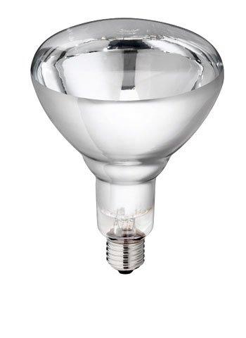 Wärmelampe PHILIPS Infrarotlampe Hartglas 250 Watt | klar GH-Pack 20 Stück