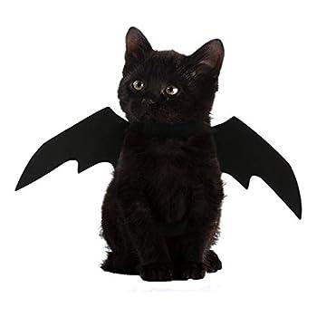 FineInno Halloween Chauve-Souris Costumes Bat Wings Animaux domestiques Pet Deguisement Vêtements Chat Cosplay Costume pour Noël, Pâques Décoration (Bat Ailes)
