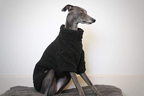 The Trendy Whippet Saluki Sighthound - Pijama Forro