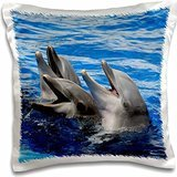 Kike Calvo Dolphins - Three doplhins on surface of the water at Oceanographic Aquarium in Valencia, Spain - 16x16 inch Pillow Case