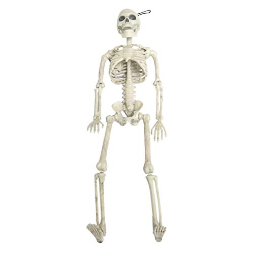 DoMoment Horrible Modelo de Esqueleto de Halloween Tamaño pequeño Cráneo móvil Esqueleto de Halloween Colgante Puntales Fiesta Decoración de Miedo