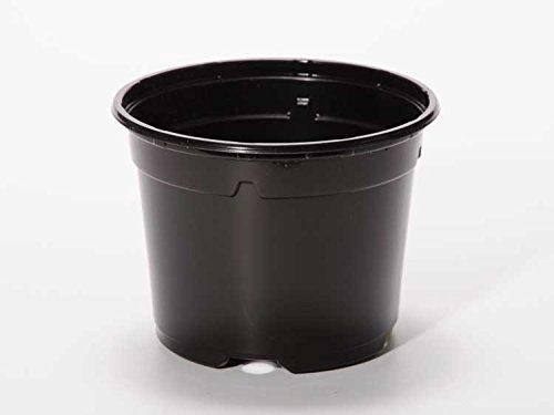 Pot horticole DUO 19 cm noir (x 100)
