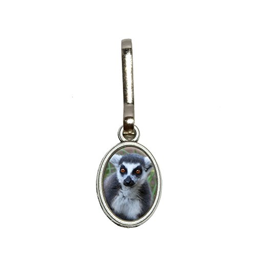 Katta Antik Oval Charm Kleidung Geldbörse Gepäck Rucksack Zipper Pull (Gepäck Charme)
