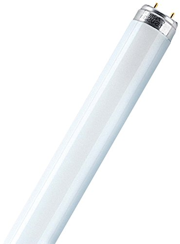 OSRAM Leuchtstoffröhre Lumilux 18W L.59cm Rohr-D.26mm Energy A cool white Lichtfarbe 840