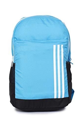 Adidas Handbag (Shocya)