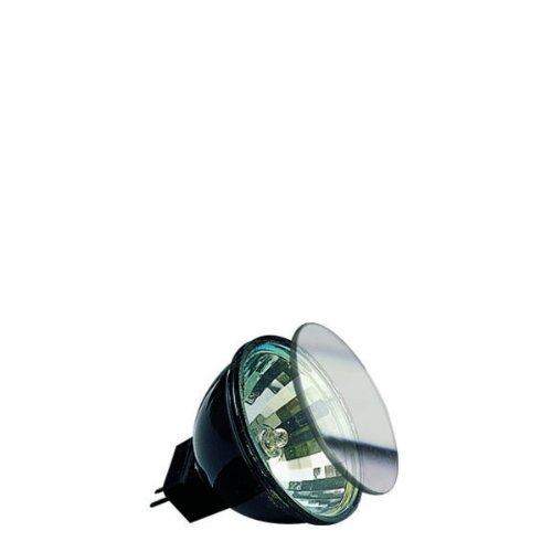 Paulmann Halogen Reflektor Akzent mit Schutzglas FTD fl -