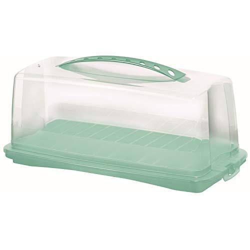 Rotho 1722505094 Fresh Kuchenbehälter Kunststoff(BPA-frei)