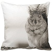 Stefan Paula Custom Pillowcase Fat Squirrel Pillowcase Pillow Case Cover Size 18X18 Inch (Two Sides)