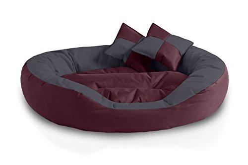 BedDog 4en1 Saba Cereza/Gris XL Aprox. 85x70cm colchón