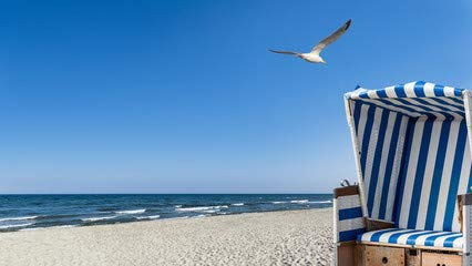 """Leinwand-Bild 140 x 80 cm: \""""Sonne, Meer, Möwen und ein Strandkorb\"""", Bild auf Leinwand"""