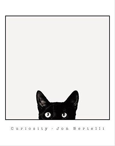 Buyartforless Jon Bertelli Curiosity Black Cat Poster/Wanddekoration, Motiv Kitty Kitten Peeking, 35,6 x 27,9 cm, Schwarz/Weiß -
