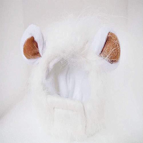 Jamisonme Kopfbedeckungen Lion Mähne Perücke Lion Hair Kopfbedeckungen für kleine Hunde und Katzen Welpen Cosplay Kostüm für Halloween Weihnachten Ostern Festival Party Aktivität ()