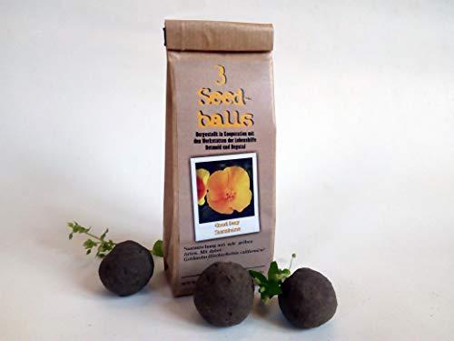 Die Seedball-Manufaktur Die Seedballs Good Day Sunshine 3er, Natur mit gelbblühender Blumenmischung 5,5 x 13 x 3 cm