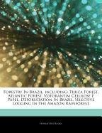 articles-on-forestry-in-brazil-including-tijuca-forest-atlantic-forest-votorantim-celulose-e-papel-d