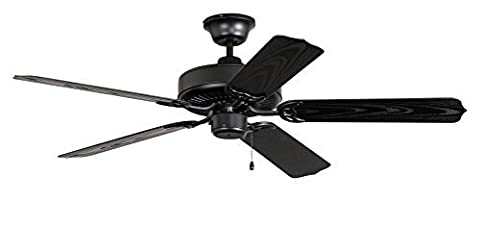 Litex WOD52MBK5X All Weather Collection 52-Inch Indoor/Outdoor Ceiling Fan with Five Black Grained ABS Blades - Light Kit Adaptable by Litex (LIBP7)
