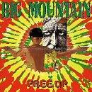 Songtexte von Big Mountain - Free Up