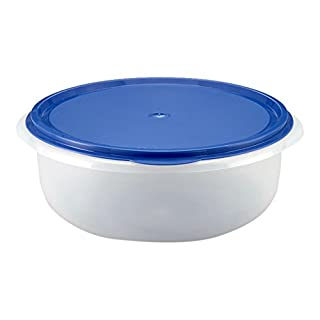 Axentia Plastic Boxes-Clear Food Storage Container BPA Free, White/Blue, 31.8 x 28.4 x 12.2 cm