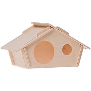 Haus Holz Neo