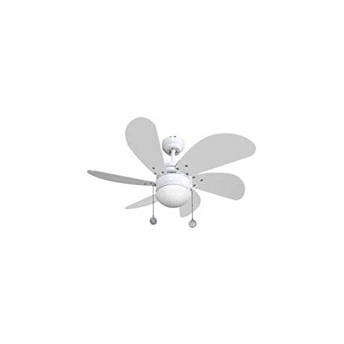 31X9vIgH4XL. SS500  - AKUNADECOR LED Ceiling Fan and Remote Control 009 White 75 cm -