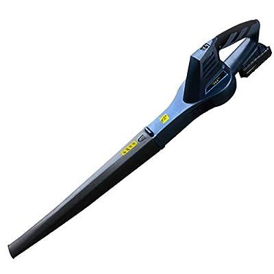 Blowers Gasbetriebener Blatt Gebläse-Mehr Zweck Gebläse/Kehrmaschine/Reiniger 200Km/H, 12000U/Min Last Strom Leistung, 3,08 Kg Gewicht, mit Zubehör