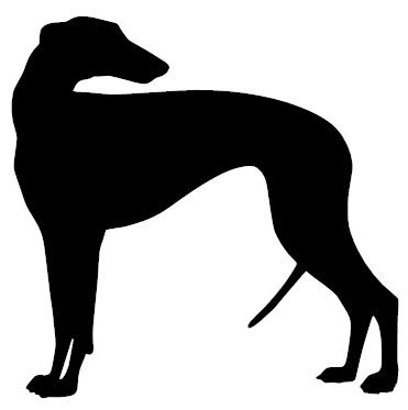 greyhound-funny-bumper-sticker-car-van-bike-sticker-decal-free-pp