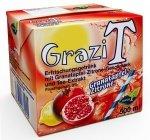 GraziT - meinT - Eistee, 12 x 500ml