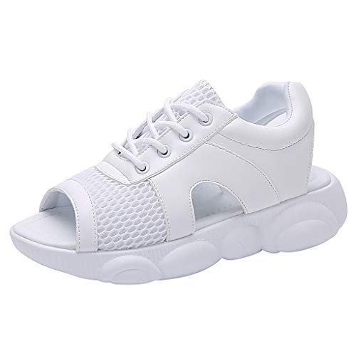 Wawer Damen Sandalen, Damenmode Mesh mit Fischmund weichen unteren bequemen Bären niedrigen Sport coole Schuhe Frauen-Damen schnüren sich oben Peep Toe-Komfort-Freizeitschuh-Sport-Sandalen