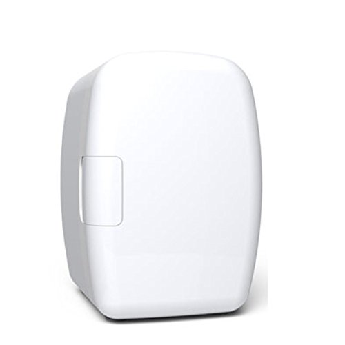 GEXING Auto Kühlschrank 6L Kühlschränke Mini Kühlschränke Auto Kühlschrank Auto Dual-Use Kleine Box Auto-Single-Door-Dual-Use,A-6L (Box Single-door)