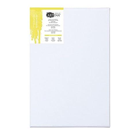 Artina - Cartons entoilés - Toile 100% coton - Qualité fine - Apprêtées 2 fois - 30x40cm - Lot de 5