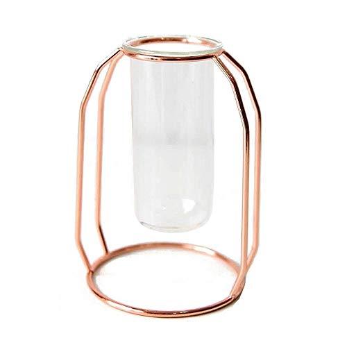 Jarrón de cristal transparente con marco de metal