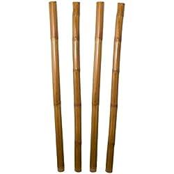 Pons Collection Juego de 4 cañas de bambú