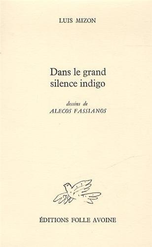 Dans le grand silence indigo